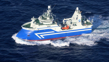 vessel Image